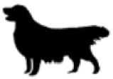 icon large dog